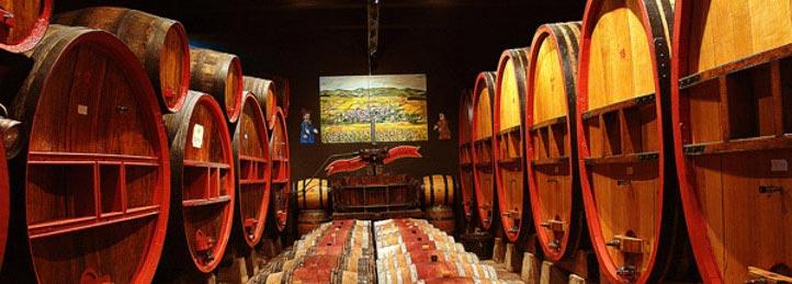 Изготовление вина - кропотливый процесс, превращающий свежий виноград в самый изысканный и увлекательный напиток в...